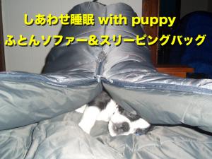 しあわせ睡眠 with puppy ふとんソファー&スリーピングバッグ