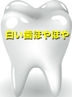 白い歯ほやほや