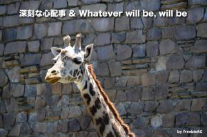 深刻な心配事&Whatever will be, will be