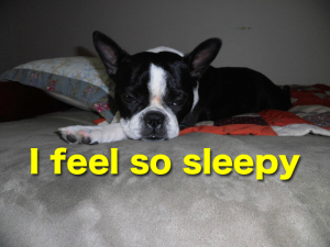 I feel so Sleepy〜