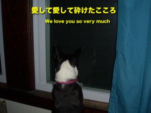 愛して愛して砕けたこころ We love you so very much