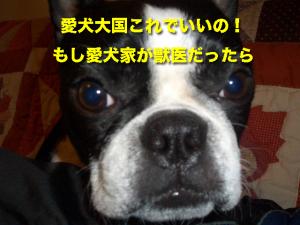 愛犬大国これでいいの!もし愛犬家が獣医だったら