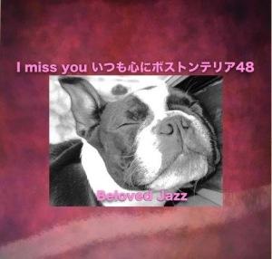 I miss youいつも心にボストンテリア48
