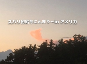 ズバリ初給与にんまり〜in アメリカ