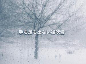 手も足も出ない猛吹雪