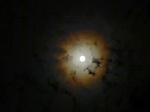 幸運の前兆って言われる神秘的な月を見たんだけど_?